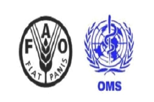 Solidarité : la FAO offre son aide à la Chine face à l'épidémie du coronavirus