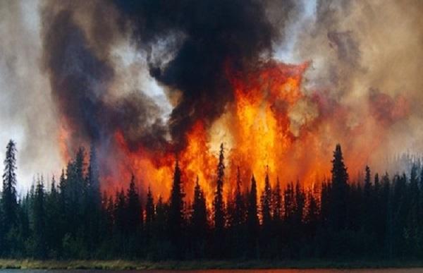 Changement climatique : L'Arctique est la proie des flammes, si grandes qu'on peut les voir depuis l'espace!