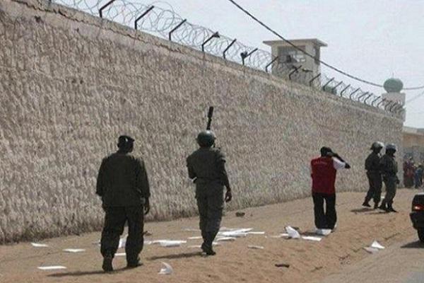 Décès de deux detenus à Rebeuss : Seydi Gassama d'Amnesty International soupçonne des non-dits dans cette affaire
