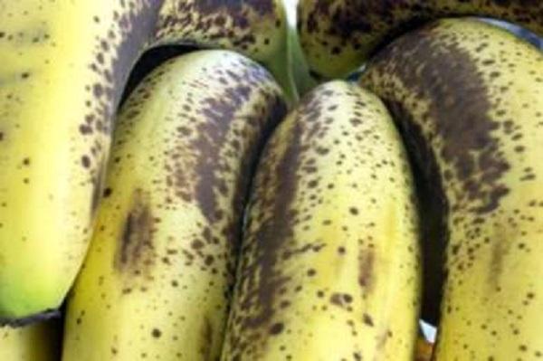 Alimentation-Santé : la FAO et ses partenaires intensifient leurs efforts visant à aider les pays à lutter contre une maladie affectant la banane