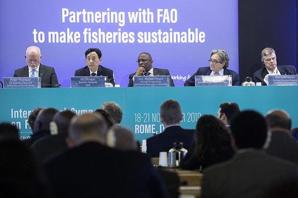 Alliance pour une pêche durable : La FAO et le Conseil italien de la recherche renforcent leurs liens à travers la plateforme iMarine