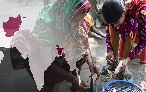 Pertes de biodiversité et changement climatique : les habitants des montagnes parmi les populations les plus durement frappées par la faim (FAO)