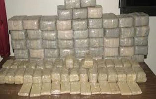 Maroc : Saisie de près d'une demie tonne de résine de cannabis