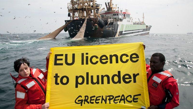 GREENPEACE AFRIQUE TIRE SUR L'UE : « L'Europe veut le poisson du Sénégal mais rejette ses migrants »