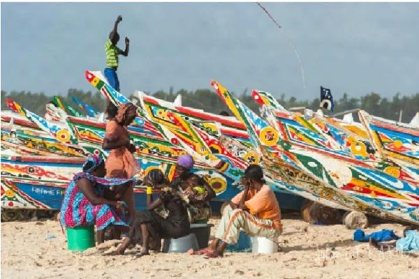 BLOCAGE SUR LE PROCESSUS D'ADHESION DU SENEGAL A LA FITI : Le secteur de la pêche encore  loin de la Transparence