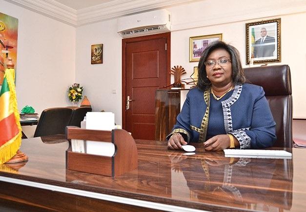 RENCONTRE AVEC LA CHAMBRE AFRICAINE DE L'ENERGIE : Le ministère du pétrole, Petrosen et Cos-Pétrogaz présentent la stratégie nationale  gazière