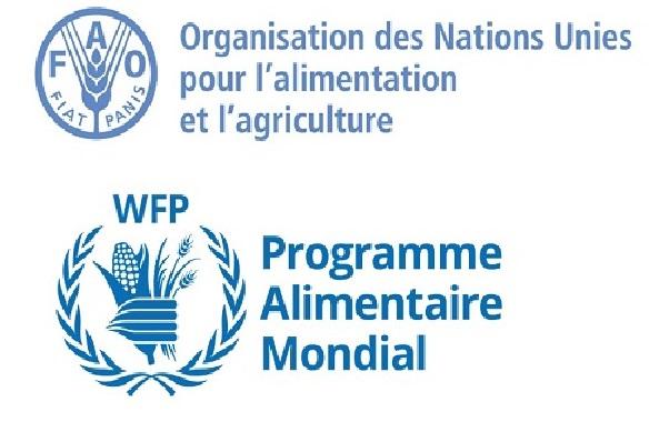 Insécurité alimentaire aiguë dans 23 foyers de famine : la FAO et le PAM tirent la sonnette d'alarme